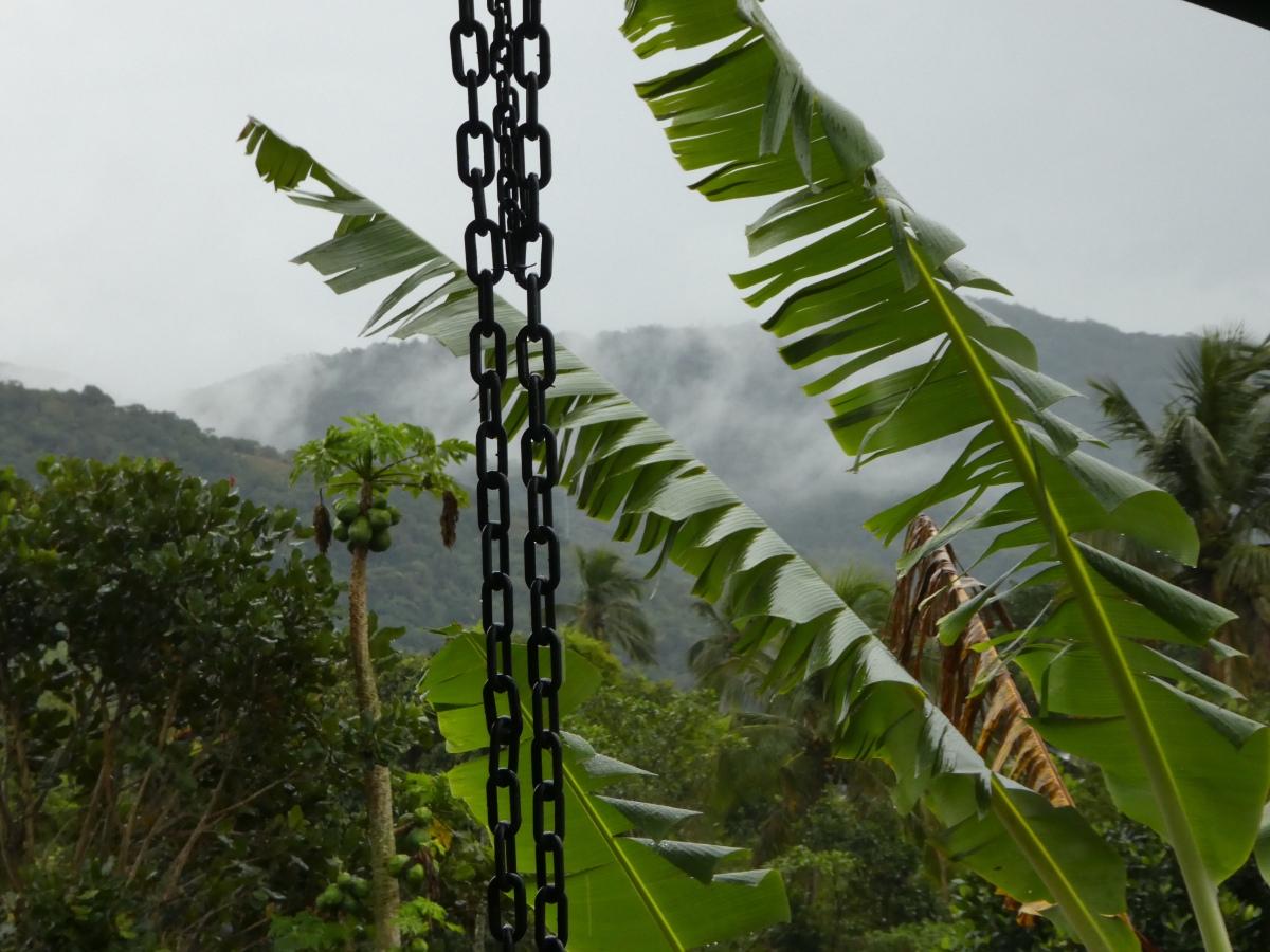 Rain, rain and more rain🌧🌧🌧