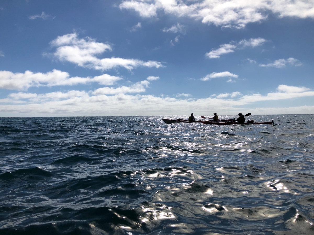 Kayaking im Abel Tasman National Park 🚣‍♂️