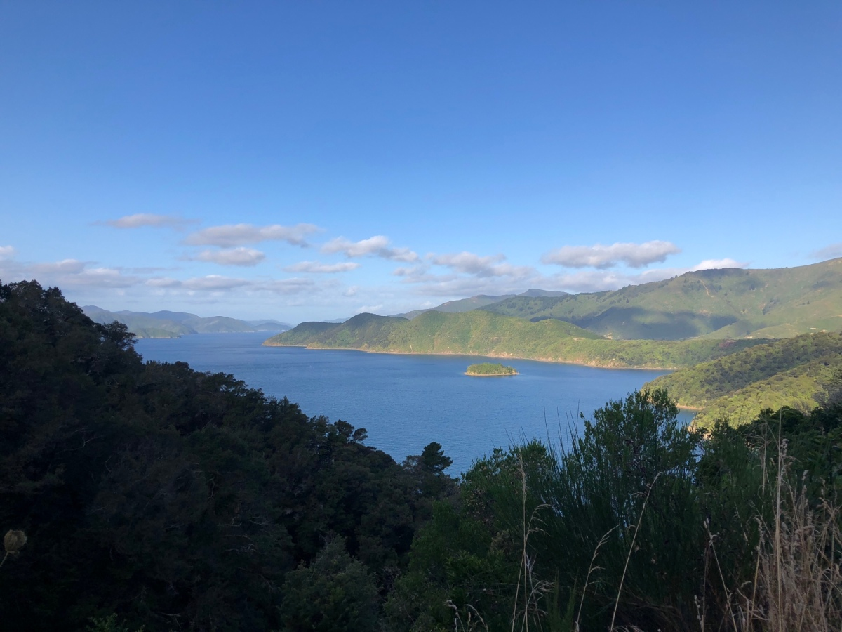 Abenteuer in den Marlborough Sounds